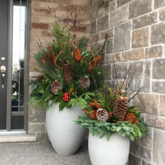 Modern white winter planters with evergreens, pine cones and red christmas decorations on a front porch