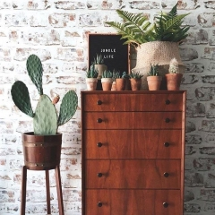 Scandinavian style furniture with wooden hutch and cactus planters