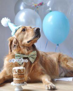 Jake celebrating