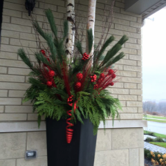 Brightly coloured outdoor planter with birch branches and red accents to welcome your guests